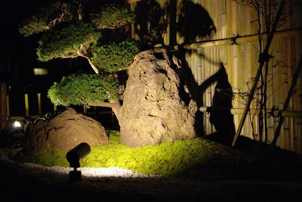 坪庭 ライトアップ